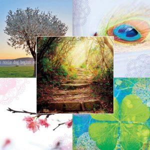 By Badu Wenskaarten - Nature - Set van 5