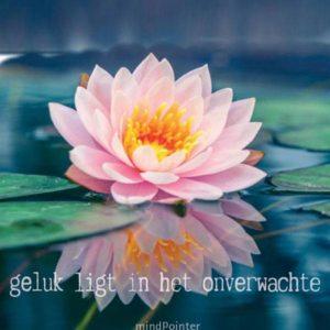 By Badu Wenskaart Lotusbloem