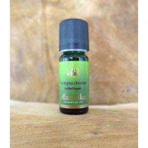 Alambika Etherische olie -  Eucalyptus Citriodora 10 ml - Alambika