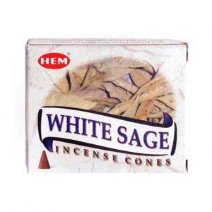 HEM Incense Wierook Kegeltjes Witte Salie